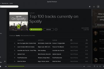 Onde as músicas baixadas do Spotify são salvas