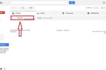 Como bloquear contatos e endereços no correio do Gmail e evitar SPAM? Guia passo a passo