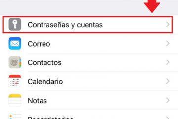Como passar todos os contatos de um iPhone para um telefone Android? Guia passo a passo