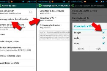 Como limpar o WhatsApp sem excluir as conversas