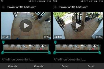 Os melhores vídeos para enviar no WhatsApp