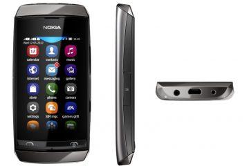Baixe WhatsApp grátis para Nokia Asha 305