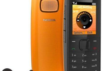 Baixe WhatsApp grátis para Nokia X1-00, X1-01, X5-01, X6 16GB, X6 8GB