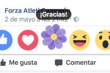 Como ter a reação de Flor no Facebook