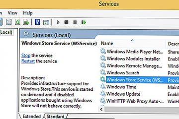 WSAPPX O que é, para que serve e como funciona e como evitar o consumo excessivo de disco e CPU do seu PC? Guia passo a passo