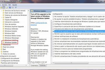 Como habilitar definitivamente o Registro de Atualização Automática do Windows?