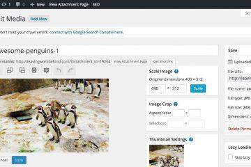 Como editar imagens no WordPress com esses plugins?