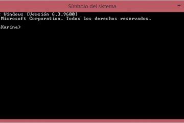 Como exibir conexões de área de trabalho remota no Windows?