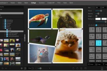 Editores de Fotos Profissionais Para PC Grátis