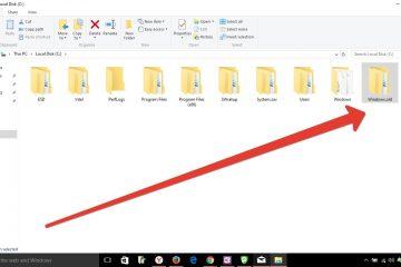 O Windows.old pode ser removido de um computador com Windows?