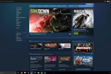 Por que os Jogos Steam não abrem no Windows 10?