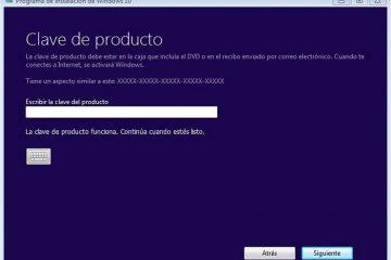 Obtenha sua chave de licença do Windows 10