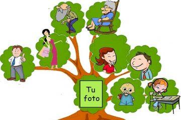 Crie sua árvore genealógica e localize relacionamentos com outras famílias