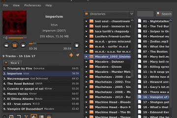 Sayonara, um novo e excelente tocador de música leve para Linux